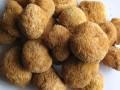 猴头菇 (3)
